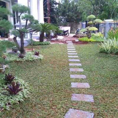 Tukang Taman di Rawamangun,Jasa Pembuatan Taman di Rawamangun,Jasa Tukang Taman di Rawamangun,Tukang Taman Murah dan Profesional di Rawamangun.