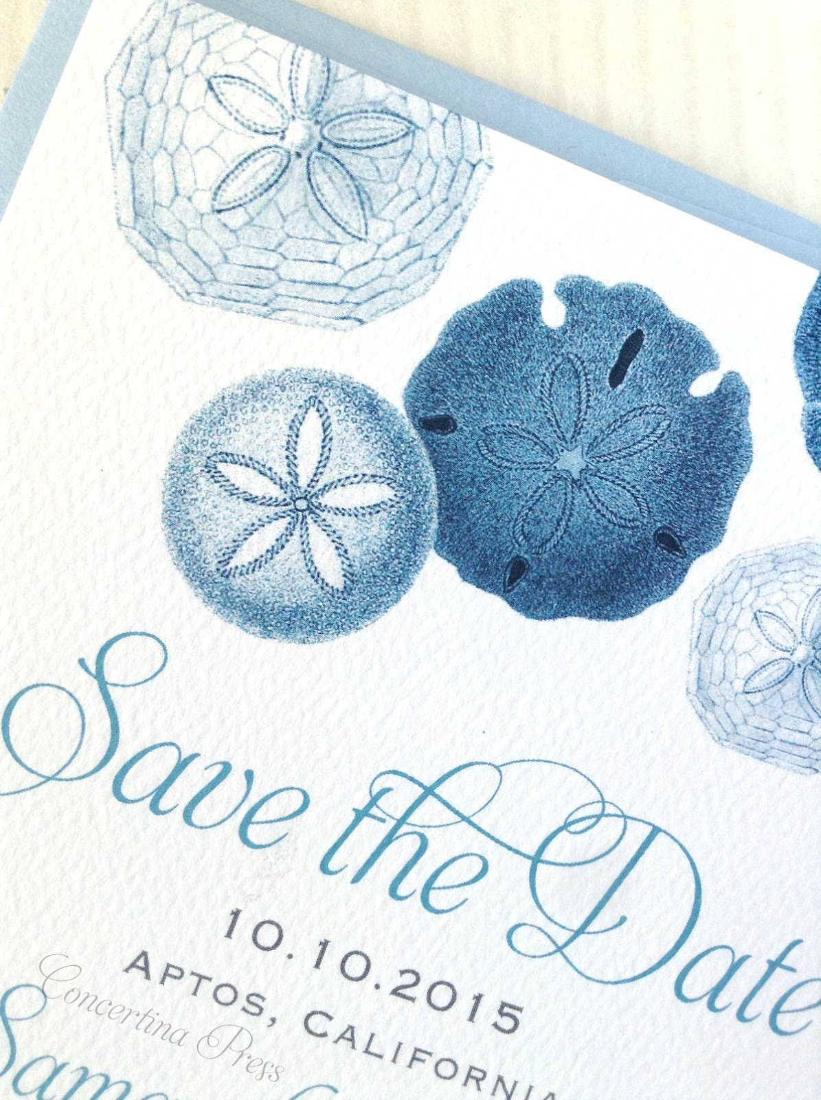 Sand Dollar Save the Dates from Concertina Press