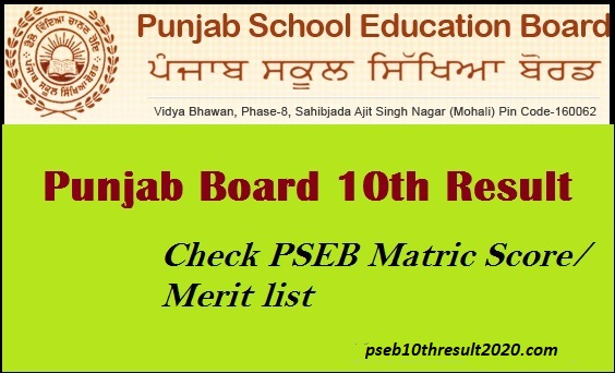 Punjab Board Class 10 Syllabus 2019-2020: Download in PDF