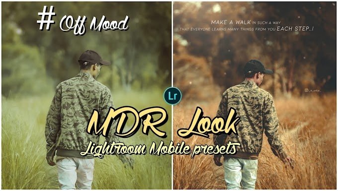 Off mood lightroom premium Presets free download