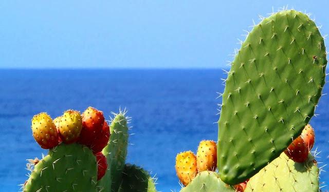 visula turismo in sicilia