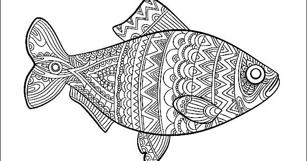free mandala  fisch malvorlagen mode zeichnung ozean tiere