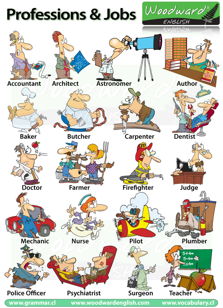 Nama Nama Jenis Pekerjaan Profesi Dalam Bahasa Inggris Vocabulary Belajar Bahasa Inggris