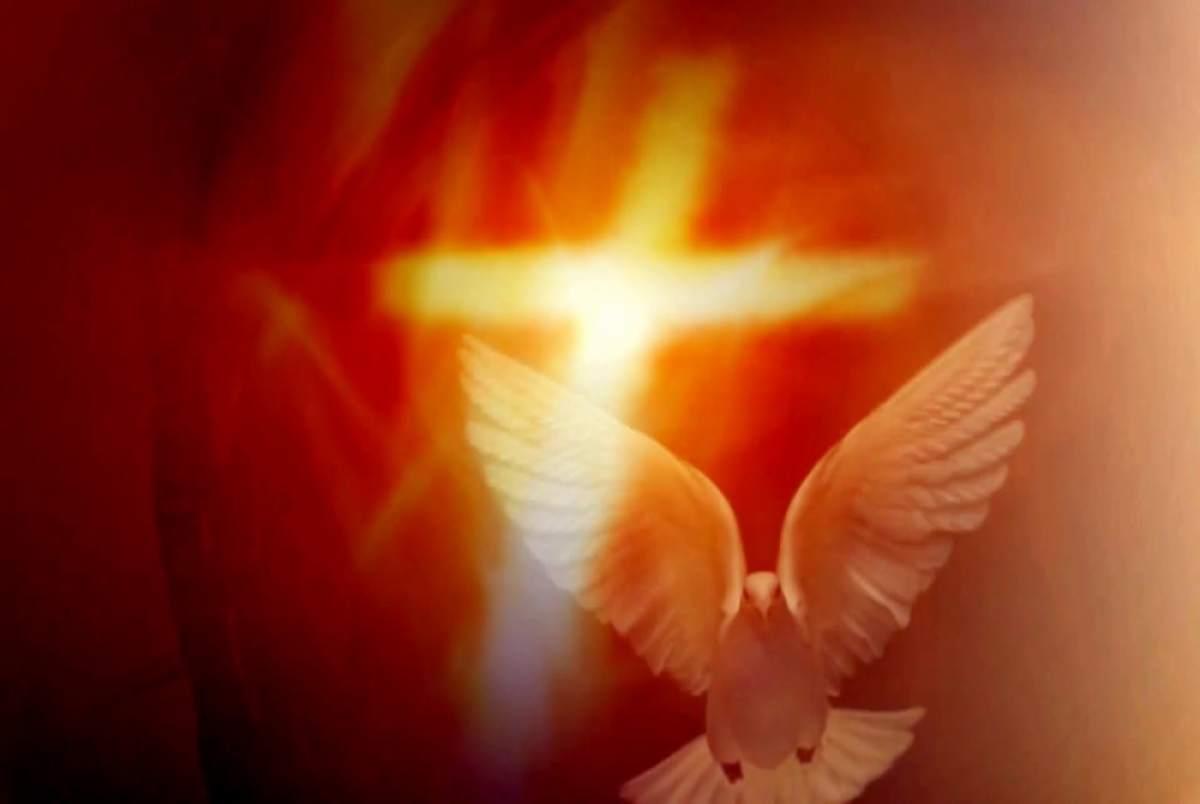 Série: Estudo do Espírito Santo (5)
