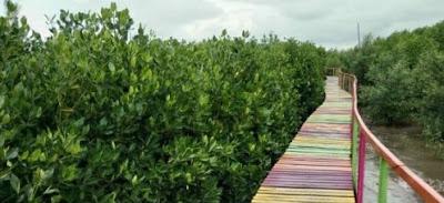 Hutan Mangrove Lantebung