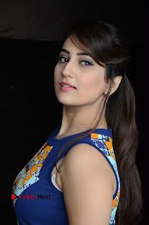 Actress Anchor Manjusha Pictures in Blue Short Dress at Jaguar Movie Success Meet .COM 0004.jpg