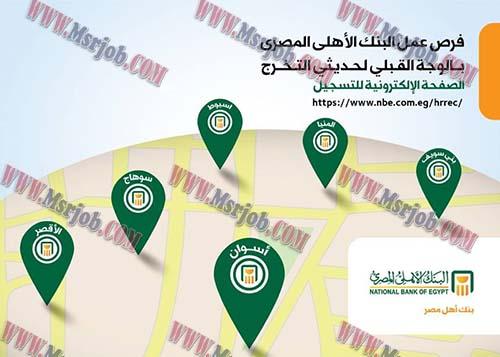 وظائف البنك الاهلى المصري لخريجي الجامعات دفعات 2013 حتى 2016 حديثى التخرج والتقديم حتى 31 / 3 / 2017