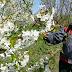 INVESTIGAÇÃO - Projeto europeu para reduzir impactos de pesticidas financiado com 3,5 ME