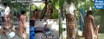 Parents commit suicide after child dies in Valachchenai - Kalkudah
