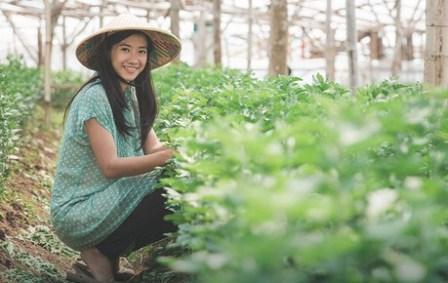 7 Peluang Usaha di Pedesaan yang bisa dikembangkan