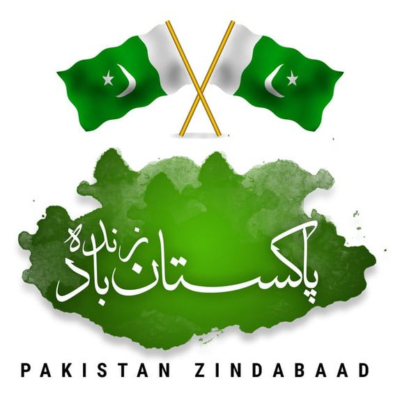 Pakistani%2BFlag%2BHoly%2BDay%2B%252821%2529