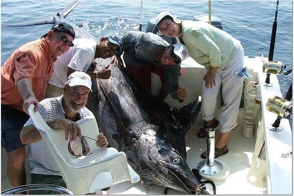 Pv sportfishing marlin and tuna fishing in puerto vallarta for Fishing puerto vallarta