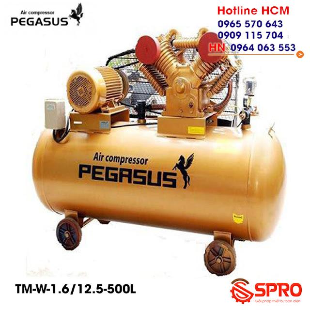 Máy bơm hơi 15HP Pegasus TM-W-1.6/12.5-500