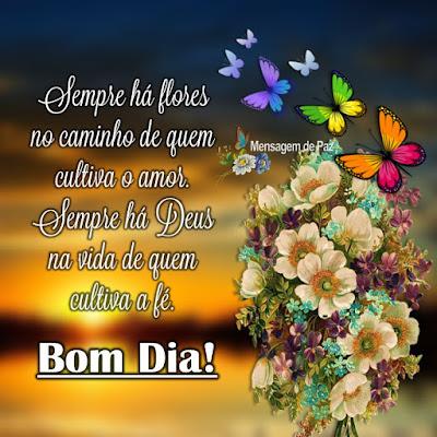 Sempre há flores no caminho   de quem cultiva o amor.  Sempre há Deus na vida   de quem cultiva a fé.   Bom Dia!