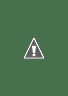 Póster de Brain on Fire