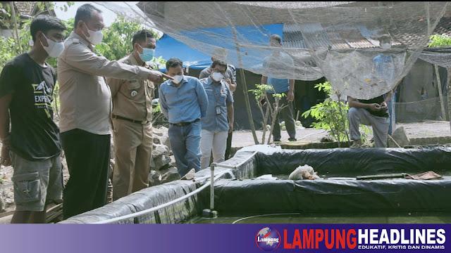 Wabup Fauzi Kunjungi Pembudidaya Ikan Hias di Pringsewu