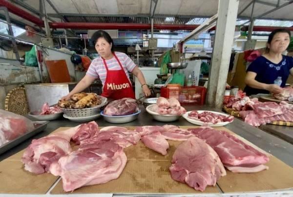 Giá lợn tiếp tục tăng: Ai đang thao túng, liệu có bán sang Trung Quốc?