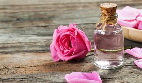 Kelebihan dan Khasiat Bunga Ros Untuk Kesihatan