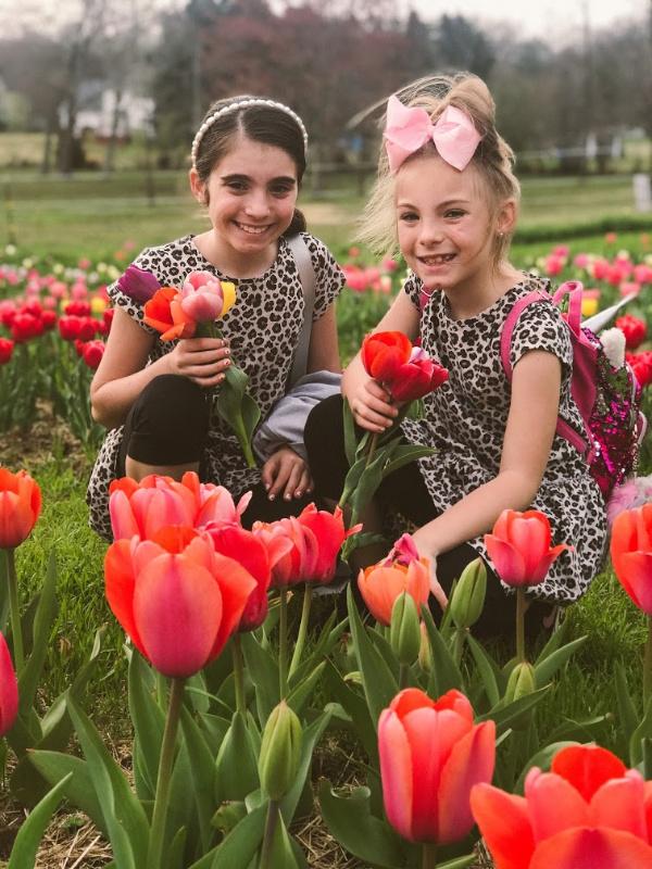 dewberry farm, tulip picking, nc blogger, north carolina blogger, mom blogger, travel blogger