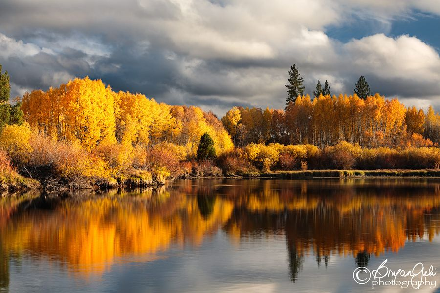 20. Deschutes River Foliage by Bryan Geli