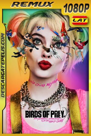Aves de Presa (2020) 1080P BDREMUX Latino – Ingles