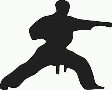 14 Gerakan Dasar Atau Basick Movement Taekwondo Berikut contoh Gerakan