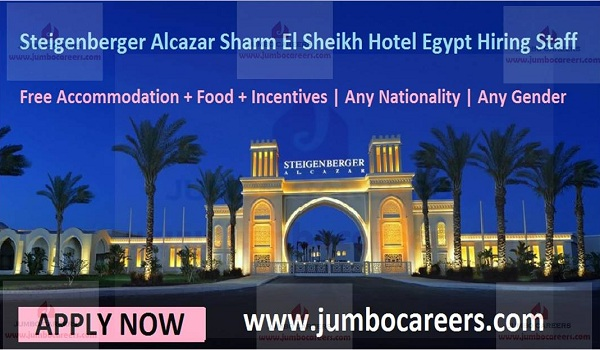 Salary jobs in Egypt, show all new vacancies,