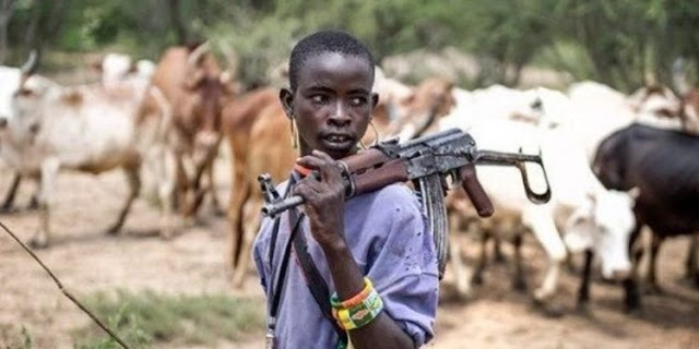 Herdsmen kill three in Ondo community