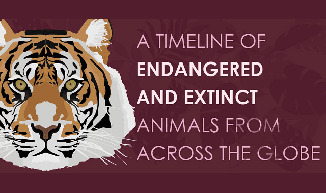 Extinct and Critically Endangered Animals from Around the World