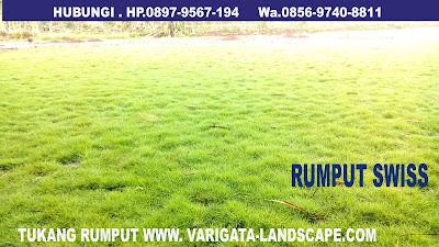TUKANG RUMPUT SWIS VARIGATA FLORA GROUP HP. 085697408811