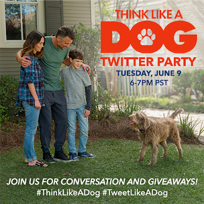 Think Like A Dog Movie Twitter Party