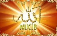 El-Mucib İsminin Ebced Sayısıyla Aynı Olan Kur'an Suresi ve Ayetleri