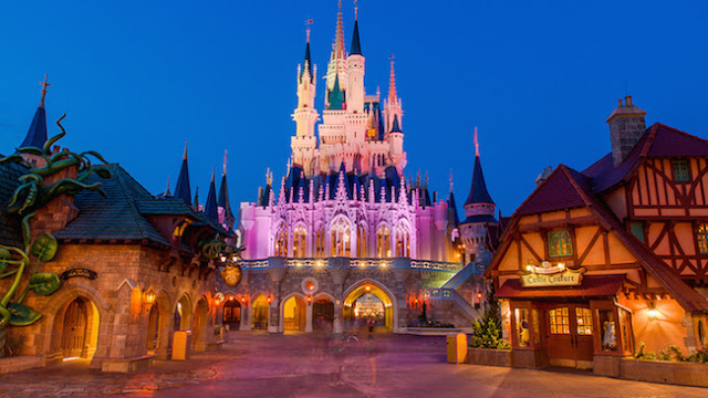 Cinderella Castle Night