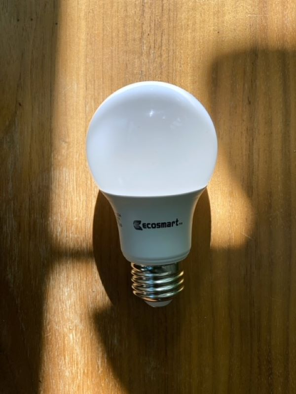 EcoSmart bulbs available exclusively at the Home Depot