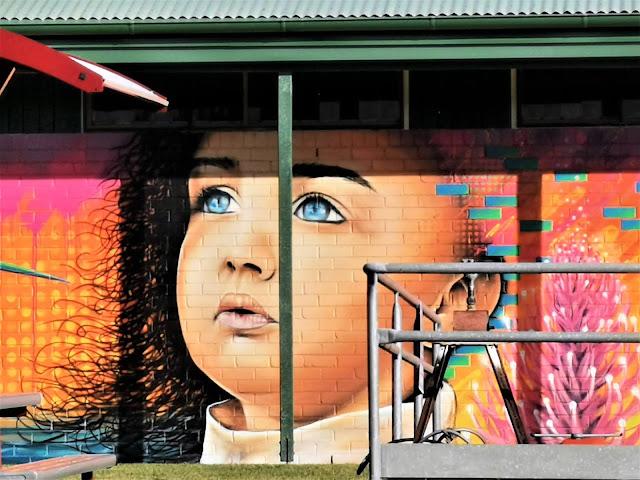 Tumut Street Art   Nitsua