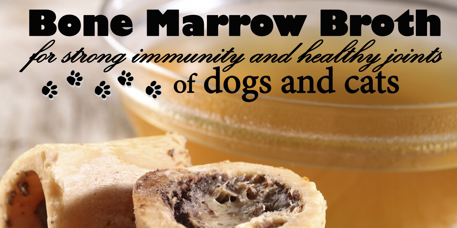 Katerinas journal bone marrow broth for your dog and cats great bone marrow broth for your dog and cats great health forumfinder Images
