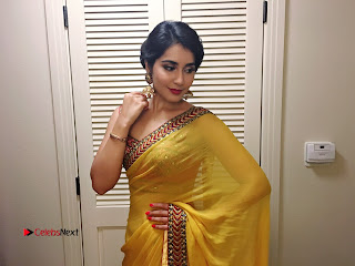 Actress Raashi Khanna Latest Pictures in Yellow Saree 0019