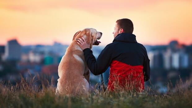 Dog with man of National Dog Day 2019, wishes images