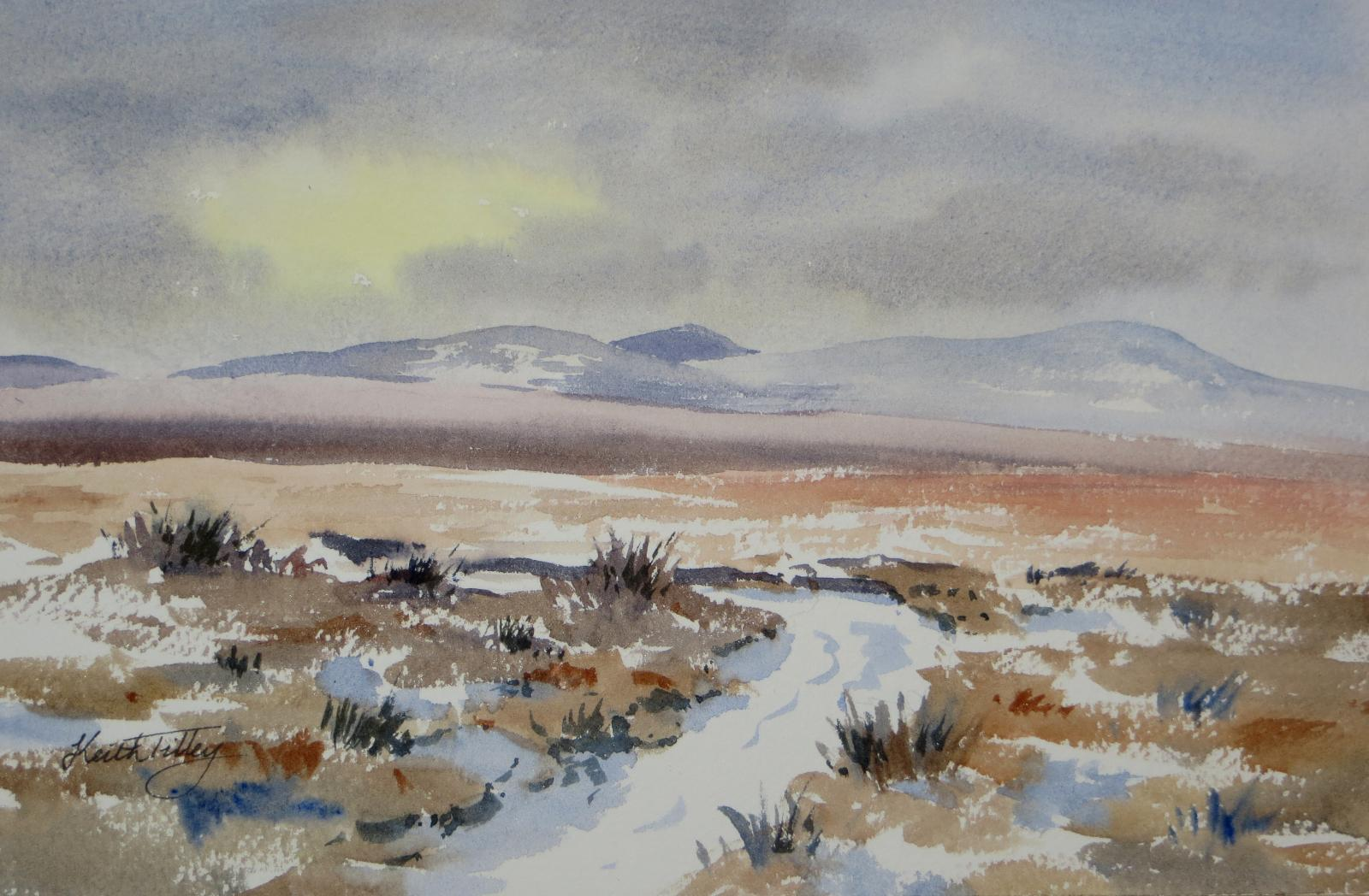 An original watercolour of a winter view in the Flow Country of Caithness, Scotland. One of the largest areas of blanket bog in Europe, and an important area for nature conservation. Part of the Forsinard Flows Nature Reserve