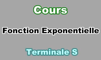 Cours de Fonction Exponentielle Terminale S PDF