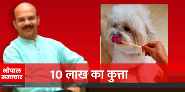 असि कमिश्नर आलोक खरे: 10 लाख का कुत्ता, सवा लाख की टेबल और...