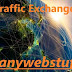 Best Traffic Exchange Sites - Tested