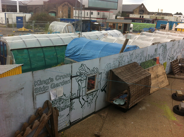 Looking down onto the first Skip Garden in Kings Cross, view of polytunnels