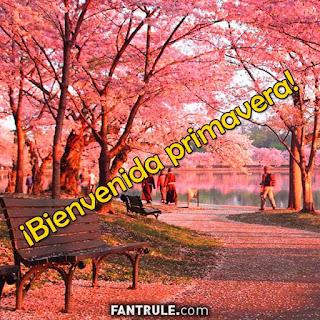imagenes feliz primavera 2018 hola bienvenida frases