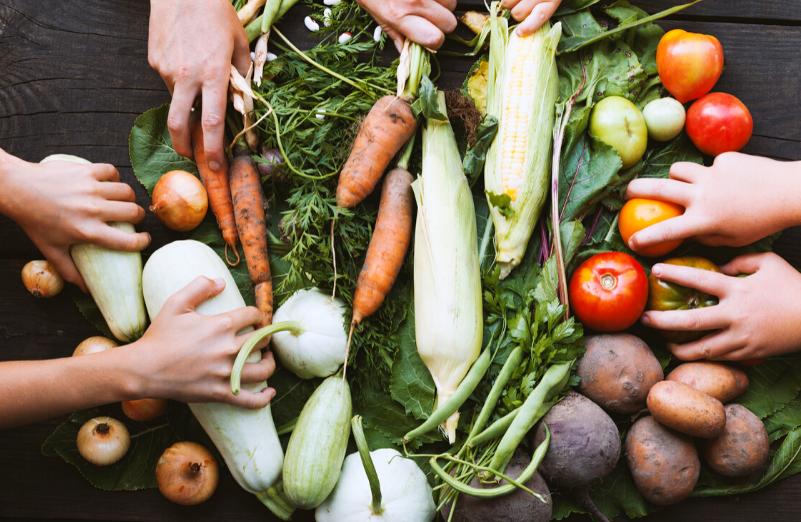 16 Ekim Dünya Gıda Günü: Çözüm Dayanışma