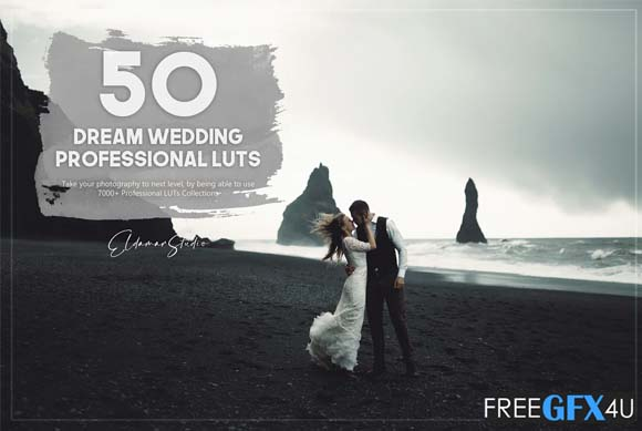Dream Wedding 50 LUTs Pack