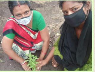 विश्व पर्यावरण दिवस मनाया