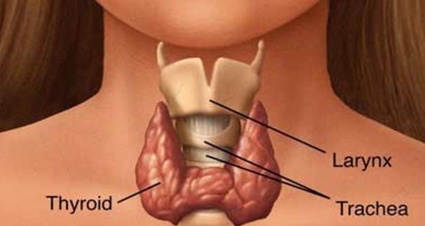 थायराइड के लक्षण और उसके बचाव |Thyroid Syndrome and its Rescue