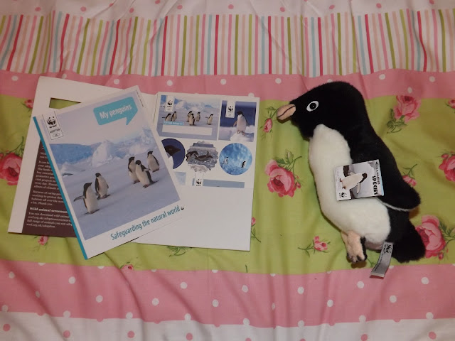 A penguin adoption certificate and plush