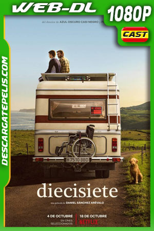 Diecisiete (2019) 1080p WEB-DL Castellano – Ingles